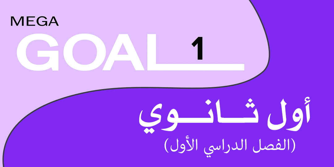 Mega Goal_1_4490