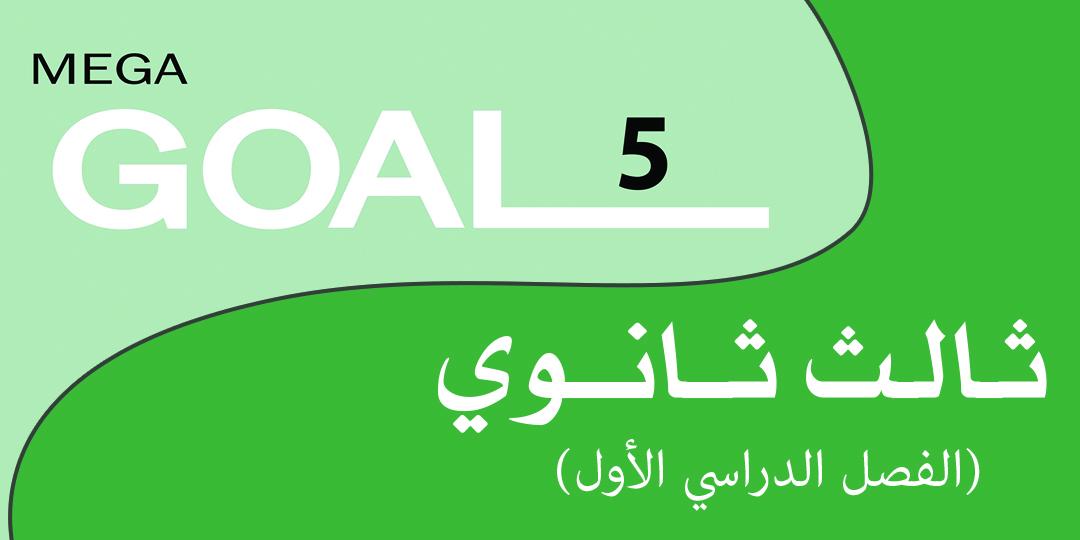 Mega Goal_3_4655