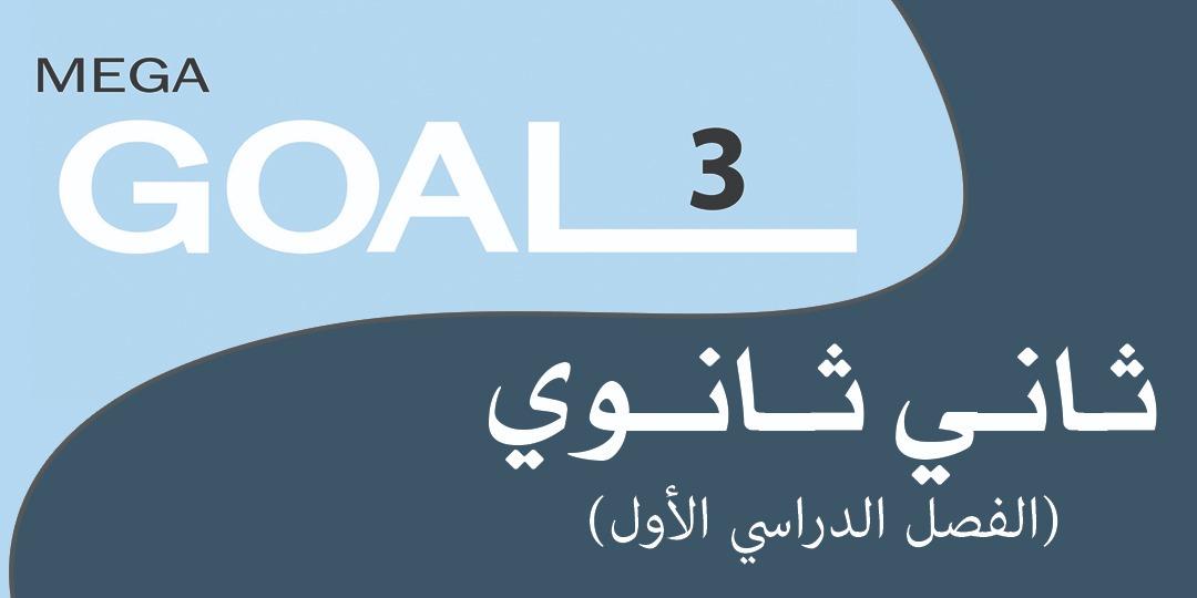 Mega Goal_3_60