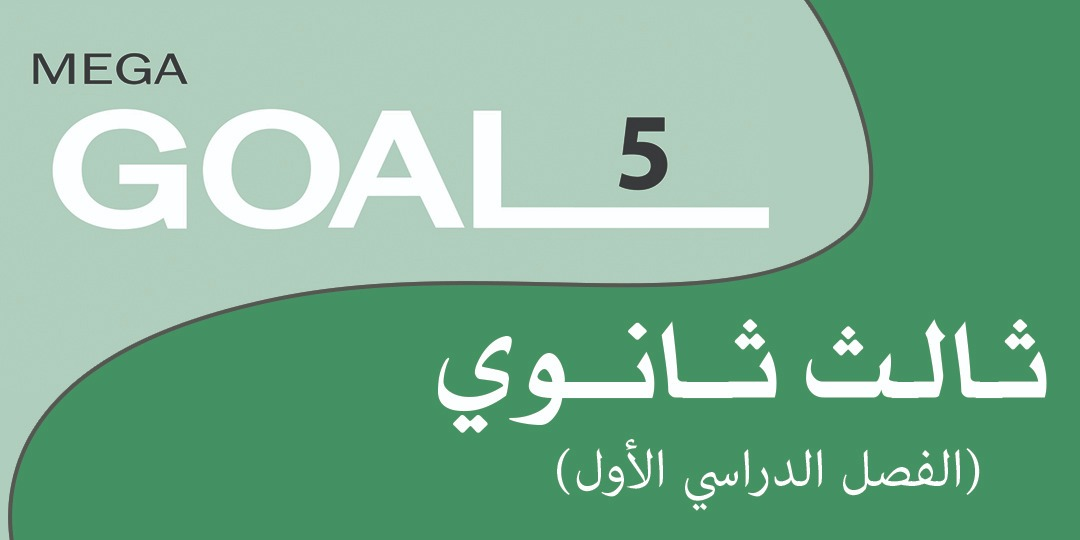 Mega Goal_5_61